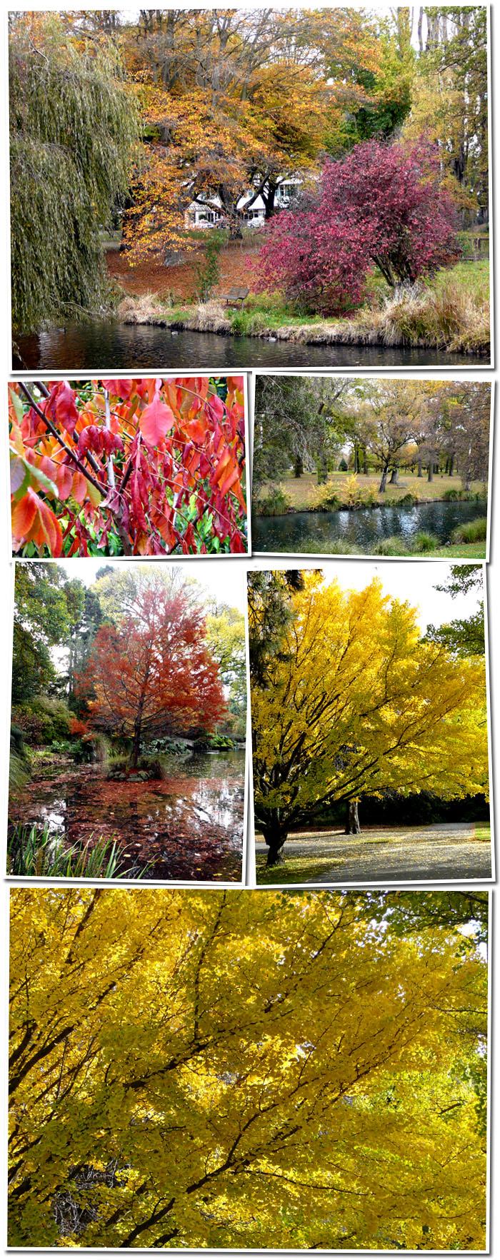 Automne au parc botanique