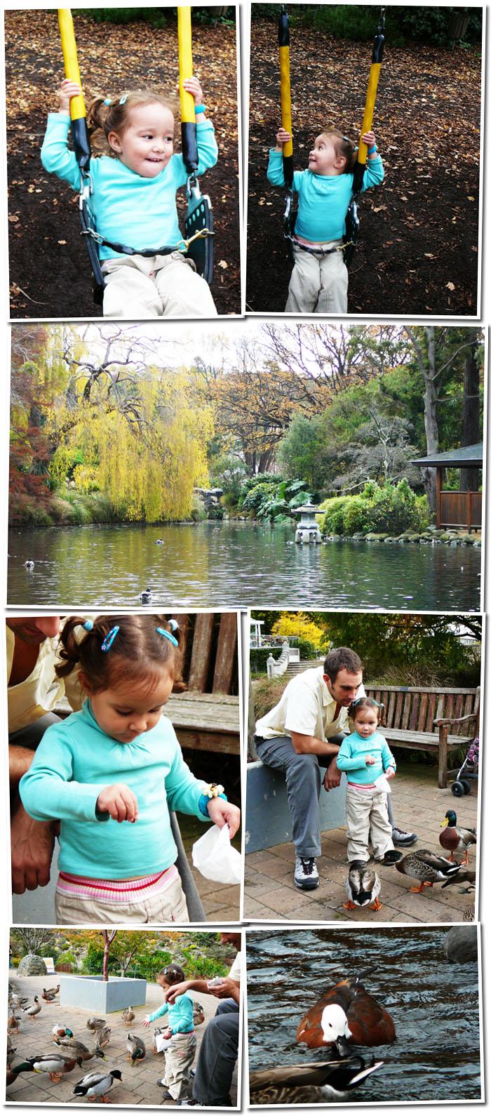 Jardin botanique de Dunedin
