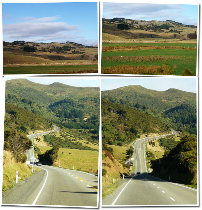 Road to Dunedin