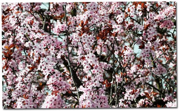 http://www.lautreatelier.fr/images/blogobaby/love.jpg